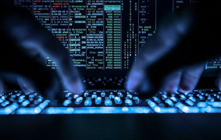 Arrestata Natalia, la 40enne che faceva la doppia vita: ingegnere informatico di giorno, hacker professionista di notte